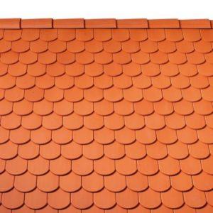 hodfarku-ives-teglavoros-textura